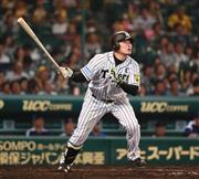 阪神・福留、安藤ラス投は勝ち試...