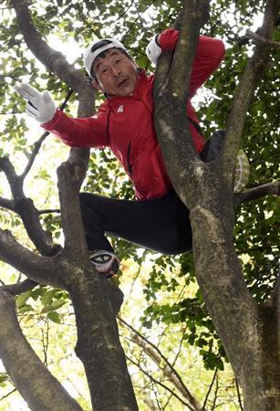 「寛平 木登り」の画像検索結果