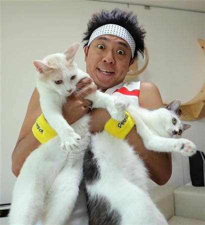 池崎 猫 サンシャイン 保護