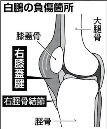 http://www.sanspo.com/sports/images/20180712/sum18071205020005-p3.jpg
