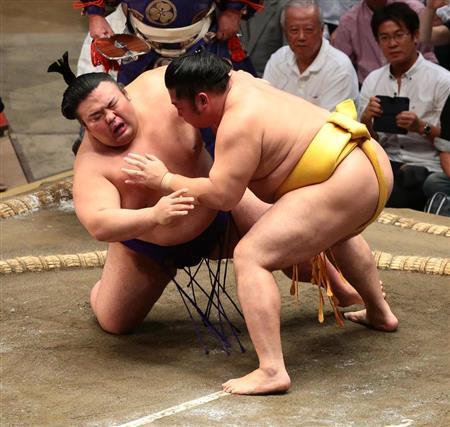 今日 大相撲 結果