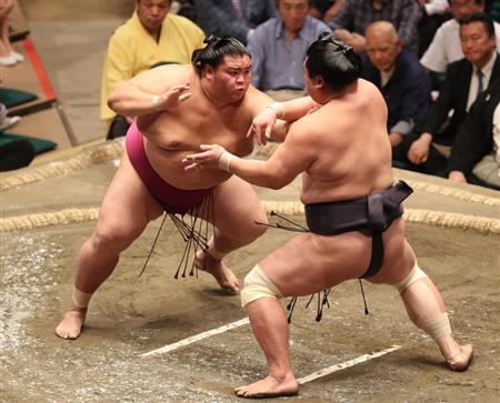 大相撲 今日 の 結果
